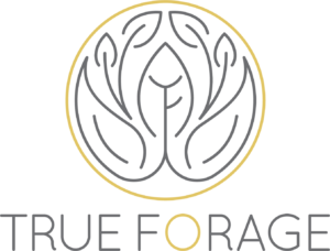 True Forage Logo with Name