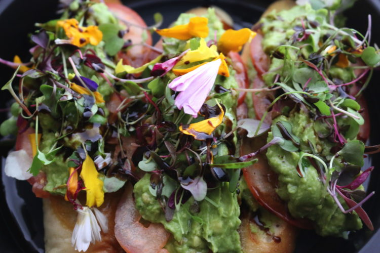 vegan-avocado-toast-west-restaurant-true-forage